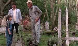 Прокуратура предотвратила незаконное строительство школы вКоношском районе, которую хотели возвести настаром кладбище