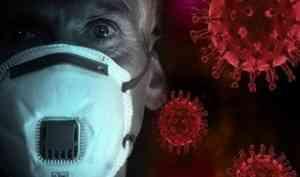 В Поморье второй день не фиксируют новых случаев заражения коронавирусом