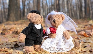 Северодвинские молодожёны зарегистрировали брак онлайн