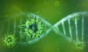 За сутки число зараженных коронавирусом в России пополнил 771 человек