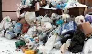С должниками за вывоз мусора в Архангельской области начали судиться