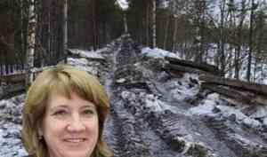 Рудкина, как так? Глава Приморского района не знает, кому принадлежат плиты с раздербаненой дороги возле Брусеницы
