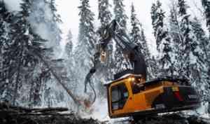 В Архангельске обсудили кадровое обеспечение предприятий лесной отрасли