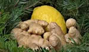 В ЛДПР призвали разобраться с ростом цен на лимоны и имбирь в Поморье