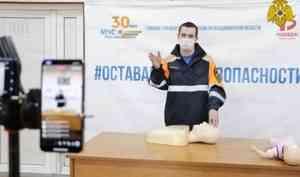 Территориальные органы МЧС России проводят онлайн уроки безопасности