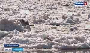Ледоход наСеверной Двине сегодня достиг границы Котласского иКрасноборского районов