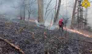 МЧС России оказывает помощь в тушении  природных пожаров