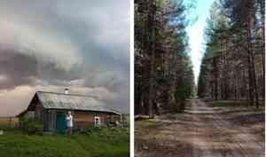 «За огородом — уже не твой лес»: жители Верхнетоемского района могут остаться без дров