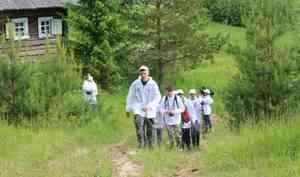 1 июня национальные парки в Кенозерье и Онежское Поморье открывают туристический сезон