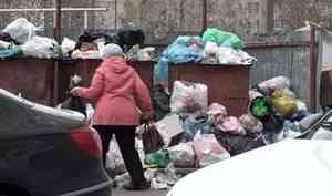 ВСеверодвинске— мусорный коллапс