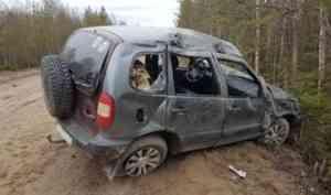 В Онежском районе пьяная компания съехала в кювет: один человек погиб