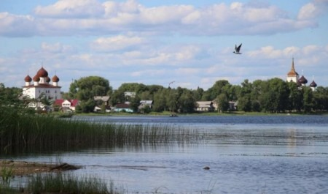 Каргопольский район стал округом: зачем это нужно?