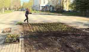 ВАрхангельске вОктябрьском районе начались работы полетнему украшению города