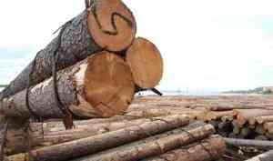 В Плесецком районе директора лесозаготовительной фирмы подозревают в финансовых махинациях