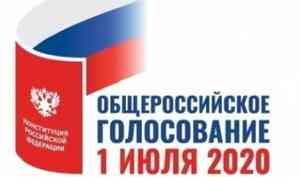 Элла Памфилова представила проект порядка общероссийского голосования