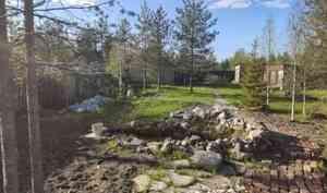 В Приморском районе в декоративном пруду утонул 2-летний ребёнок