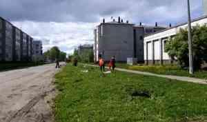 В Котласе разбили «Сад памяти»