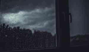 В Архангельской области пройдут дожди и грозы