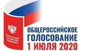 ЦИК России рассмотрел порядок дистанционного электронного голосования