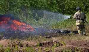 Архангельской области ожидается чрезвычайная опасность лесных пожаров