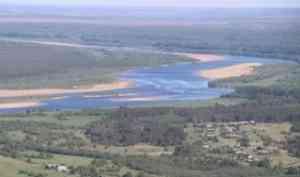 Рослесхоз разъяснил ситуацию с нерестоохранными полосами лесов Устьянского лесничества