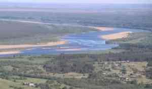 WWF ответил Рослесхозу и пояснил, как леса вдоль нерестовых рек потеряли защитный статус