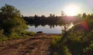 В Плесецком районе во время купания утонула 11-летняя девочка