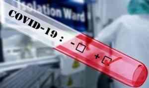 В Архангельской области зарегистрировали 119 новых случаев заражения коронавирусом