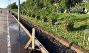 В Архангельске аллею городов воинской славы решили дополнить тротуарной плиткой