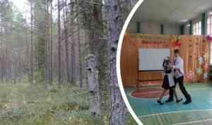 Делянка за двумя реками. Может ли школа в деревне Окуловской остаться без дров, как прошлой зимой