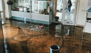 Архангельск: Северный морской музей чуть не утонул в фекальных водах