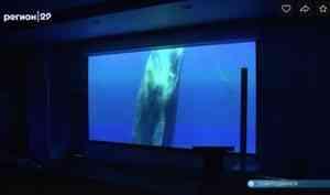 ВСеверодвинске открылся виртуальный концертный зал