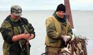 Сотрудники Ненецкого заповедника спасли двух уток изнезаконно установленных рыболовных сетей