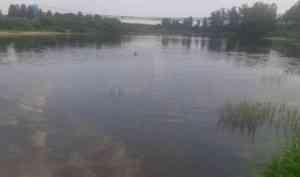 В Устьянском районе утонул шестилетний мальчик
