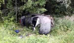 В Каргопольском районе компания пьяных подростков на «десятке» опрокинулась в кювет
