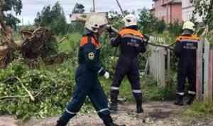 В Пинежском районе устраняют последствия шквалистого ветра