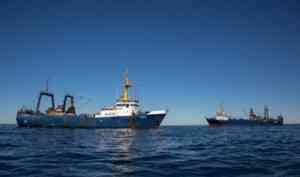 12 июля Архангельская область отмечает один из своих профессиональных праздников - День рыбака