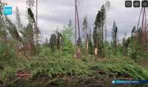 ВПинежском районе продолжают устранять последствия шторма