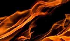 При пожаре в Верхней Золотице погиб мужчина