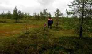 Пропавшую в Приморском районе пожилую женщину нашли посреди топкого болота