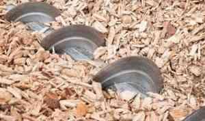 Погубили опилки и алкоголь: в Поморье работник котельной погиб на производстве