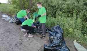 В Архангельской области прошло более 40 субботников