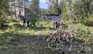 Активисты хозяйственного отряда САФУ помогают вузу готовиться к началу нового учебного года