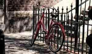 Перекусил противоугонный трос: в Архангельске поймали угонщика велосипеда