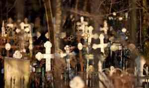 Состояние деревенского кладбища ужаснуло прокуратуру Коношского района