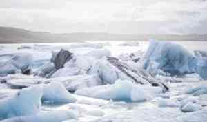 Государство поможет бизнесменам Поморья стать резидентами Арктической зоны