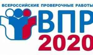 Всероссийские проверочные работы пройдут с 14 сентября по 12 октября