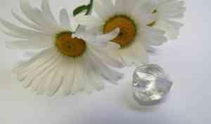 В Поморье добыли крупный алмаз ювелирного качества
