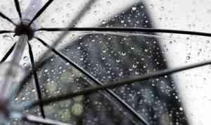 Скандинавский циклон принесет в Поморье дожди на этих выходных