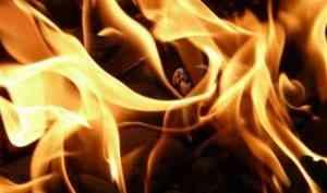 Пожар в Заостровье унес жизнь местного жителя и чуть не уничтожил несколько домов